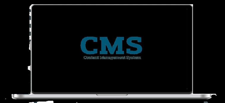 Custom CMS Services